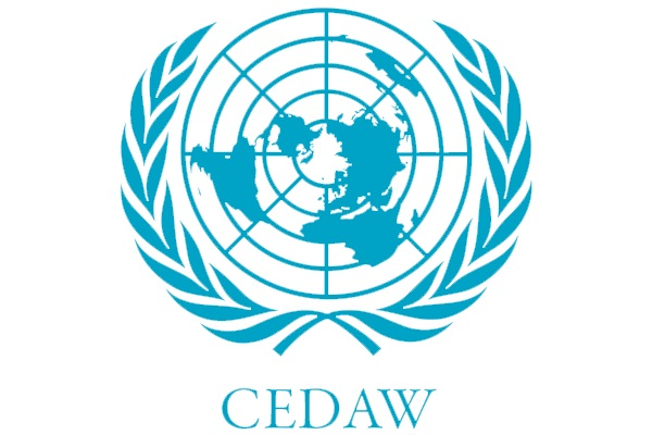Открыта регистрация на вебинар «Практика Комитета ООН по ликвидации дискриминации в отношении женщин по делам о домашнем насилии